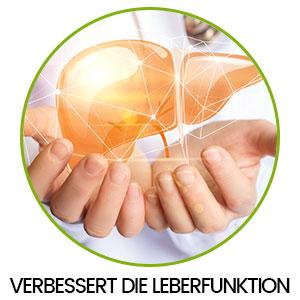 Zwei Hände halten eine grafisch dargestellte Leber in einem Kreis und Aufschrift 'Verbessert die Leberfunktion'