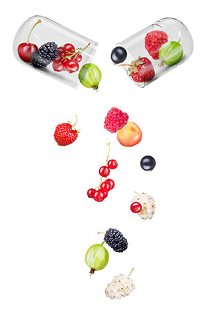Zwei halbe Kapselhülsen, aus denen verschiedene Früchte fallen
