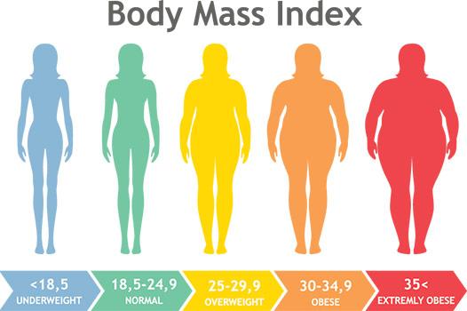Body Mass Index Infografik mit bunter Darstellung von untergewichtig bis adipös