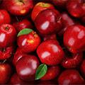 Viele dunkelrote Äpfel mit Blättern wild auf einem Haufen