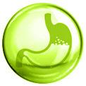 Grüne Blase mit einem grün gezeichneten Magen in der Mitte