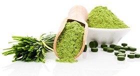 Grünes Pulver in einer Schale und einer Schaufel, daneben grüne Tabletten und Chlorella Stiele