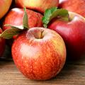 Äpfel als Appetitzügler