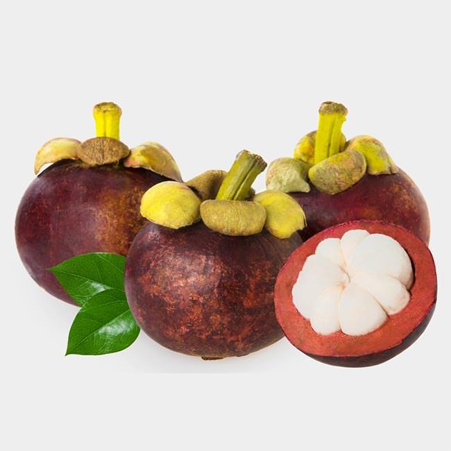Die Mangostan-Frucht in Europa