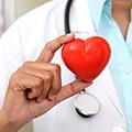 Unterstützt das Herz & den Cholesterinspiegel